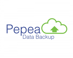 What is Cloud Data Backup?